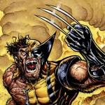 Wolverine-Anger