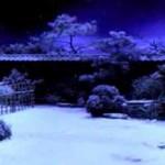 Kill Bill, snow2